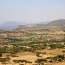 A világ teatermesztő országai -11. Afrika Teák Afrikából