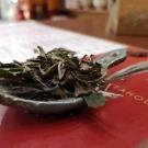 Teatörténetek 7. - Stenczel Timi blogja