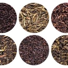 Hogyan hozhatjuk ki a legtöbbet teánkból?A fekete, a fehér és a zöld tea ugyanabból a növényből származik: a camellia sinesis-ből
